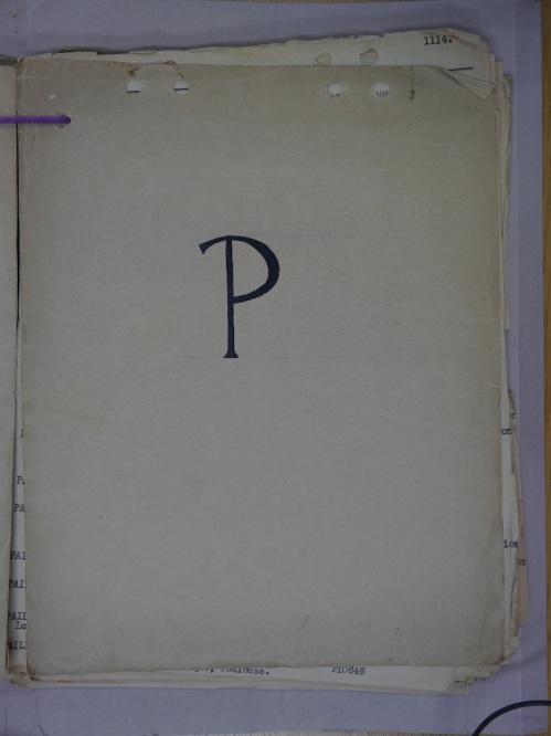P1300328
